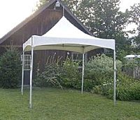 Canopy 10x10 Show Style