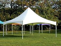 Canopy 20x20 Show Style