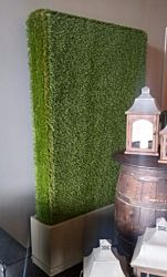 Green Hedge Wall | 6.5' x 4'